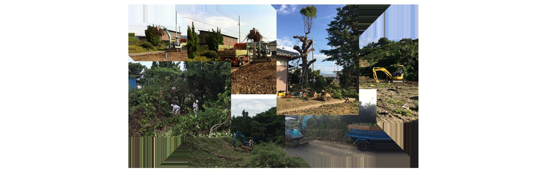 香川県で伐採・草刈りするならお任せください。